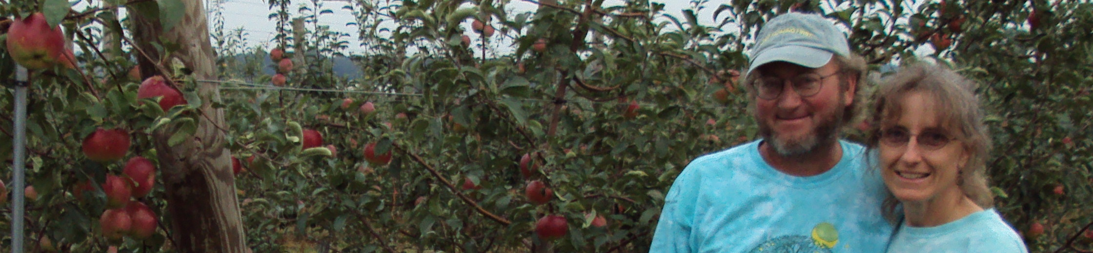 Fruit Geeks- Lisa Kershner from North Star Orchard